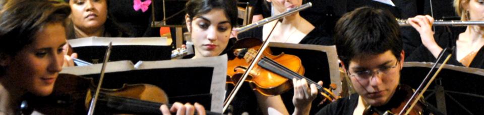 Bannière - Le Roi Carotte - orchestre